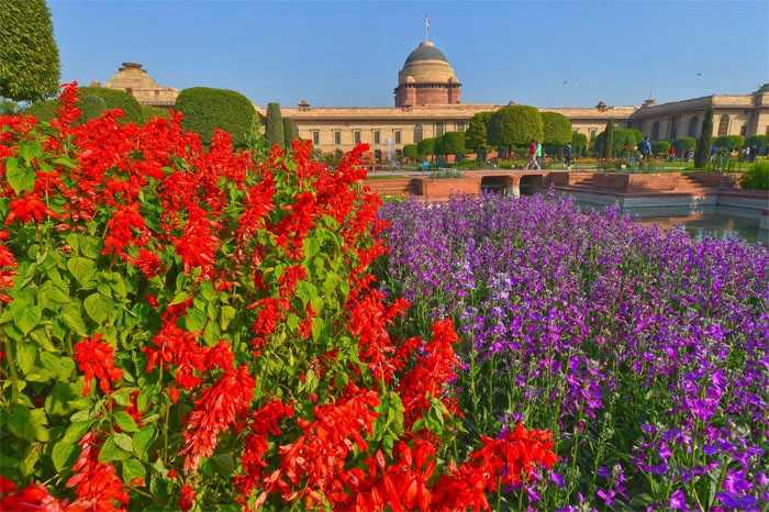 Mughal Gardens to Open for the Public from February 13
